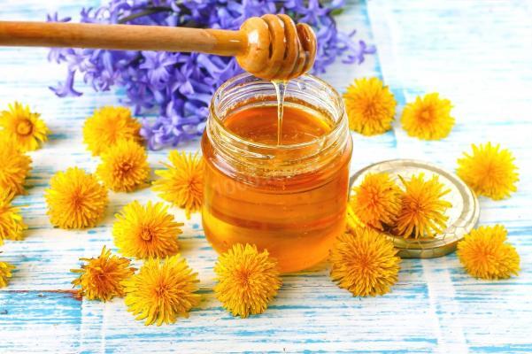 мед из одуванчиков в домашних условиях рецепт